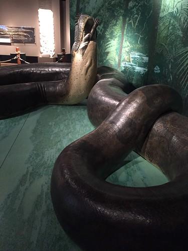 Burke museum   by T_Muzzy