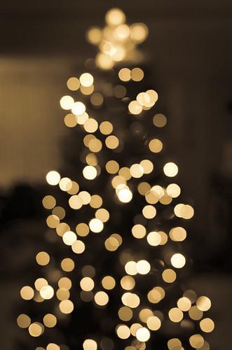 christmas xmas abstract tree love philadelphia sepia lights us nikon holidays peace unitedstates bokeh pennsylvania joy newyear christmastree merrychristmas happynewyear feliznavidad 2016 bokehballs