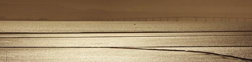 bridge dumbartonbridge fremont paloalto milpitas california art gold sepia bay sanfranciscobay sunset day dusk 1xp raw nex6 photomatix sel55210 sanjose siliconvalley pond salt reflection waterreflection outdoor sky water qualityhdr qualityhdrphotography serene hdr newark donedwardssanfranciscobaynationalwildliferefuge donedwards wildliferefuge fav100