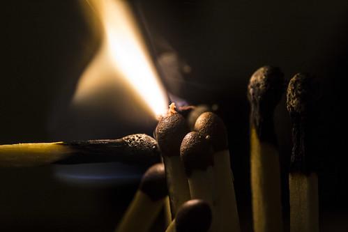 Makro Fire | by Wendelin Jacober
