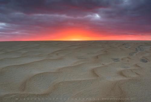 northcarolina nc carolina coast coastal outerbanks obx jockeysridgestatepark jockeysridge sunset evening lastlight wind ripples sand dune moving darkskies november outdoors outside landscape