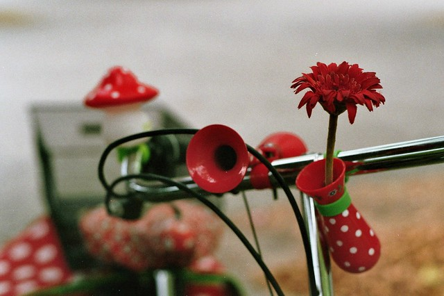 Bike Pünktchen Style - I shot film