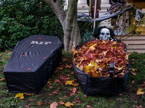 Rest in Leaves