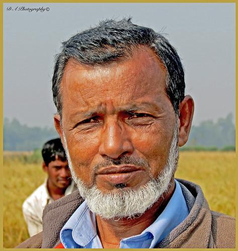 brother kalaborpur khanbari bangladesh sylhet nabiganj man asia asian portrait beard family happy ricefields 2014