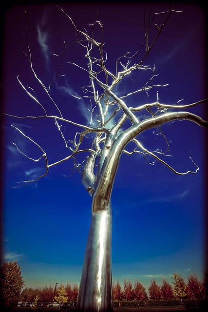 Forest Park Placebo by Roxy Paine (2)