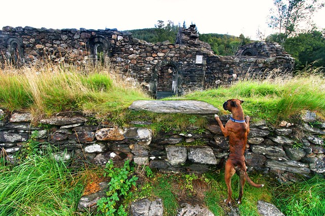 Ollie inspects the ancient stonework
