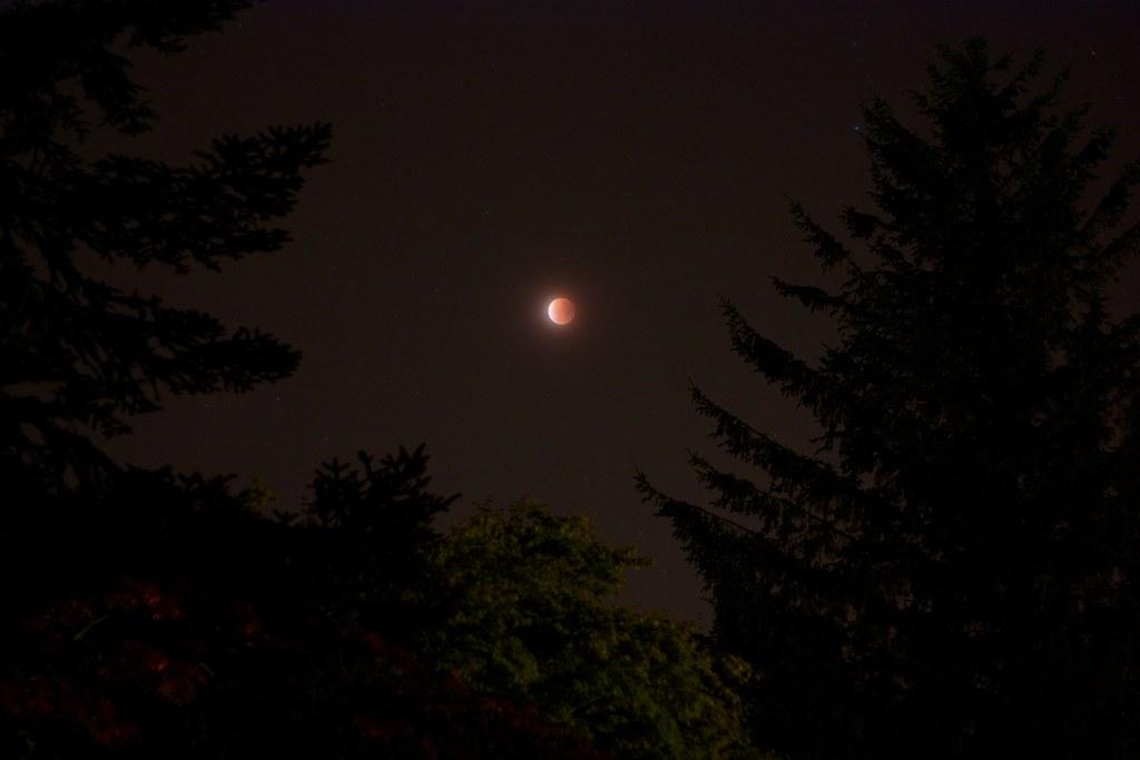 Lunar Eclipse - 2015-09-28