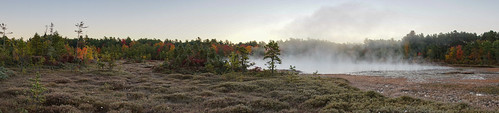 amherst newhampshire ponemah ponemahbog sethjdeweyphotography autumn bog morning sunrise