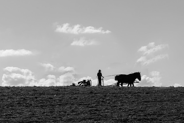 On the Amish Trail near Saratoga Springs, New York