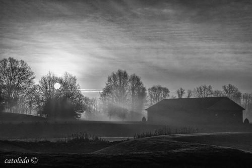 foggymorning fog monochrome sunrise risingsun maryland unitedstates us
