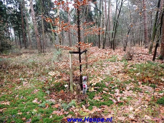 2016-11-30       Lange-Duinen    Tocht 25 Km   (153)