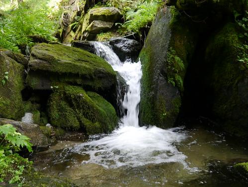 alps water creek forest austria österreich moss rocks whitewater wasser bach alpen wald niederösterreich moos autriche felsen loweraustria wildwasser hochwechsel themenweg themetrail wanderung20150725