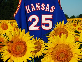 University of Kansas jersey in a field of Sunflowers! | by LauraGilchristEdu