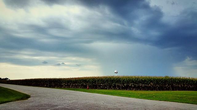 Passing rain over corn fields