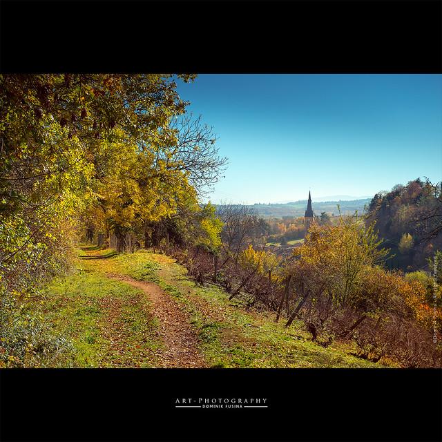 Beaujolais landscape