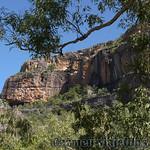 02 Viajefilos en Australia, Kakadu NP 038