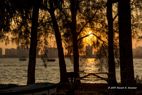 sunrise ngc sarasota greatphotographers fantasticnature kenthompsonpark
