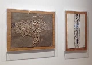 :molduras para Franz Krajcberg | by Joana Angert 21- 2221.6536