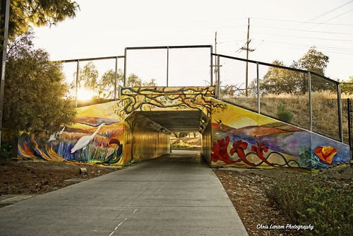 morning sunrise street art streetart davis daviscalifornia ucdavis