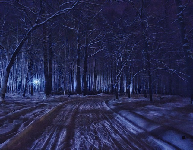 Night. Road.