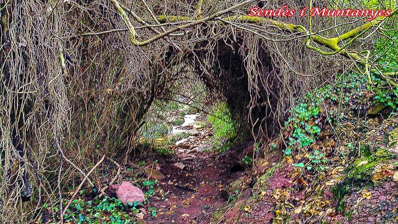tunel-barranco-aguas-negras-algimia-almonacid