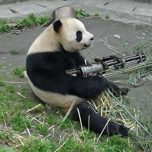 holycrap the pandas got a rail gun and a pan on his head!!