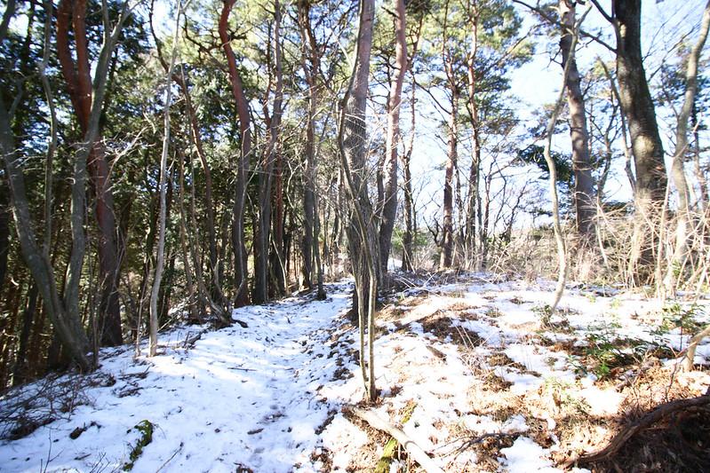 20150214-明神ヶ岳-0107.jpg