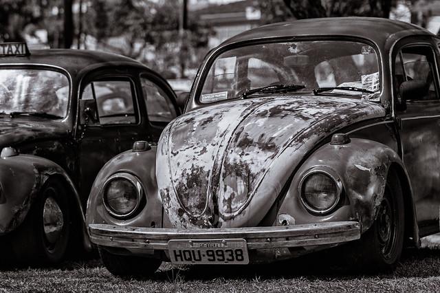 Rusty Beetle