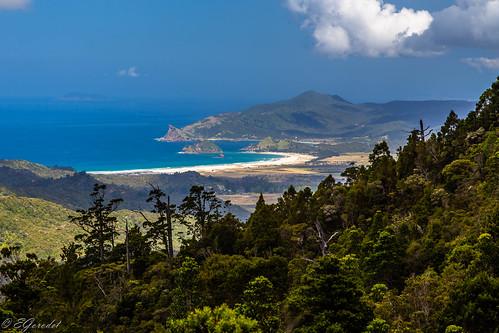 new travel newzealand mountain tourism beach nature trekking landscape island track great hike auckland zealand nz barrier wilderness hobson greatbarrierisland medlands