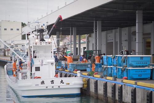 harbor hokkaido jp 北海道 日本 urakawa 浦河 43d 浦河郡 浦河港 urakawaharbor