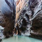 Green water, Narrows, Zion
