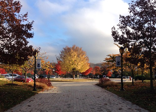 trees signs cars clouds fallcolors maryland paths 4autumn iphone owingsmills garrisonforest htmt