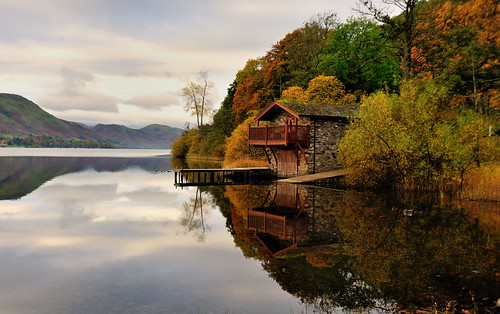 ullswaterautumn ullswater lake cumbria lakedistrict dukeofportland dukeofportlandboathouse boathouse grasses lakeland jetty shore reed tree view scenic thelakes lakedistrictnationalpark nationaltrust fell fells grass mountains clouds landscape imagestwiston district national park countryside mountain overcast still water reflection reflections morning mirror trees autumn green greens pooleybridge englishlakedistrict