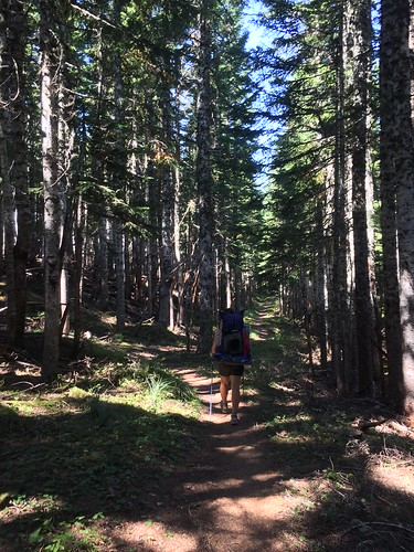 PCT: Day 140