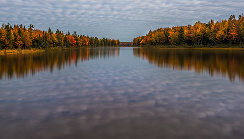 autumn trees red orange canada fall beauty clouds reflections landscape still colours atlantic newbrunswick maritimes