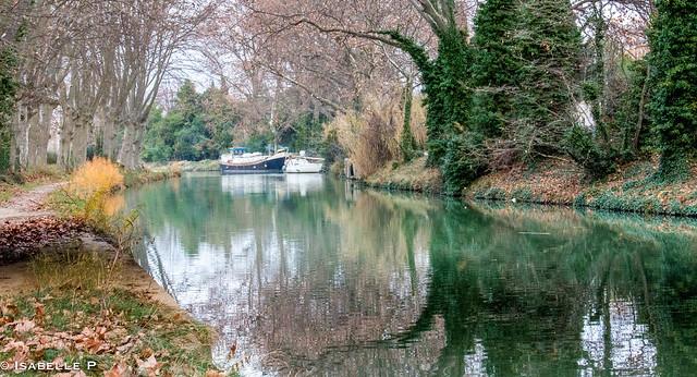 couleur d'hiver sur le canal du midi