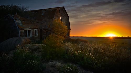 canada fall sunrise nikon outdoor fallcolors ab alberta serene sherwoodpark 2015 hwy21 strathconacounty countyofstrathcona nikon1685mmf3556 nikond7100 photographybyclaydye hwy21barn