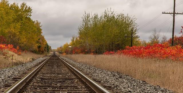 Autumn along the CN Line-3758
