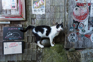 the great guide of Onomichi - II | by torne (where's my lens cap?)