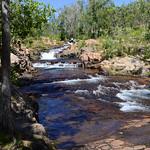 04 Viajefilos en Australia, Litchfield NP 005