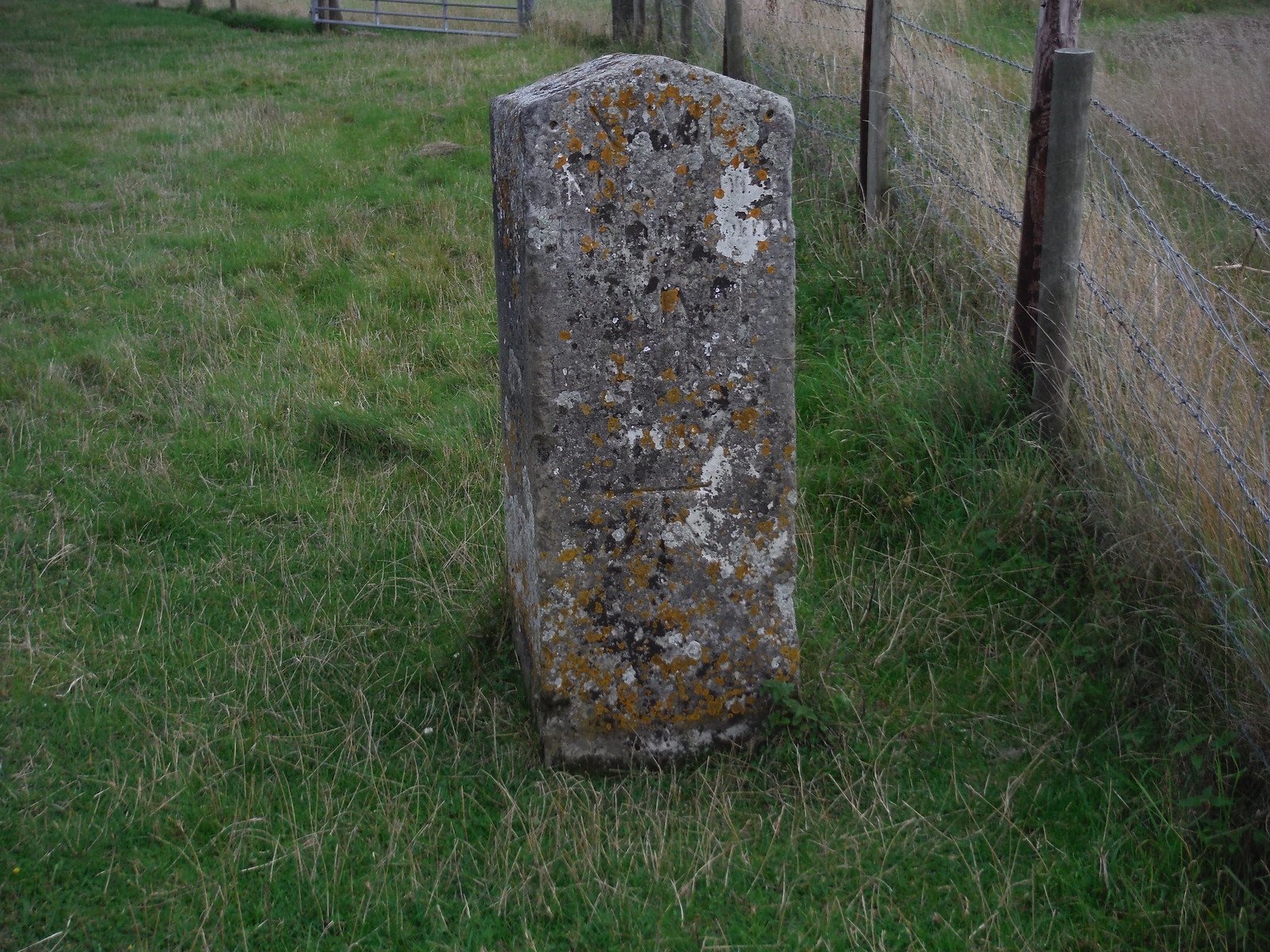 18th C Milestone near Old Shaftesbury Drove SWC Walk 251 Tisbury Circular via Ludwell and Berwick St. John