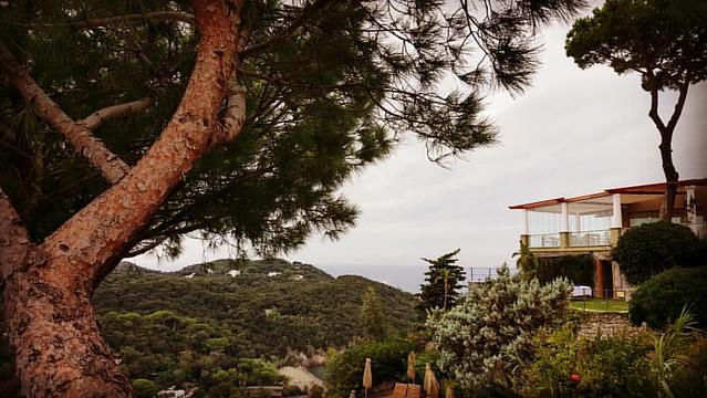 #sanmontano #honeymoon #ischia