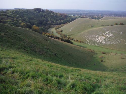 Side Valley in Barton Hills SWC Walk 229 Leagrave to Harlington