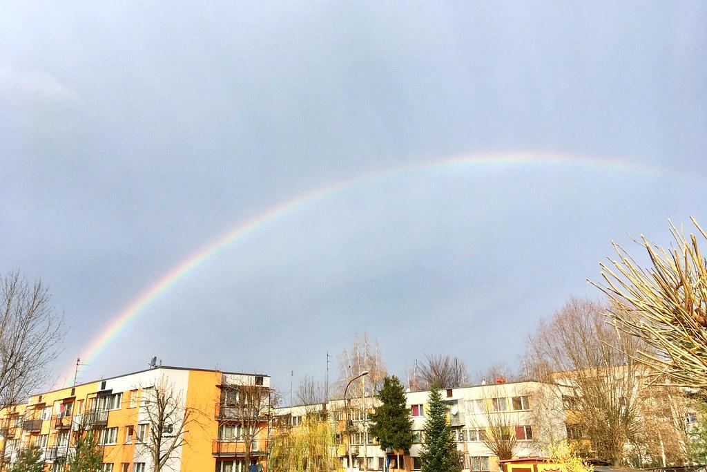 Tęcza / Rainbow