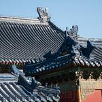 CHINA-2011_0458
