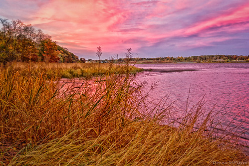 travel autumn trees color tourism water grass river newengland sunsets providence rhodeisland traveling skys travelphotography reflectons seekonkriver