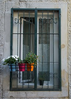 Three Planters in a Window | by refractingdymond