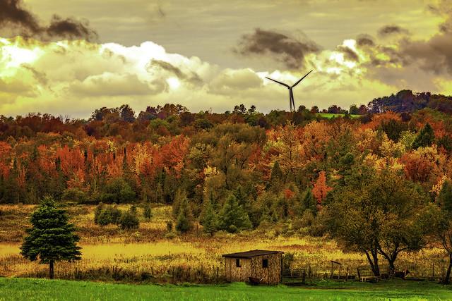 Fall Upstate NY 4743