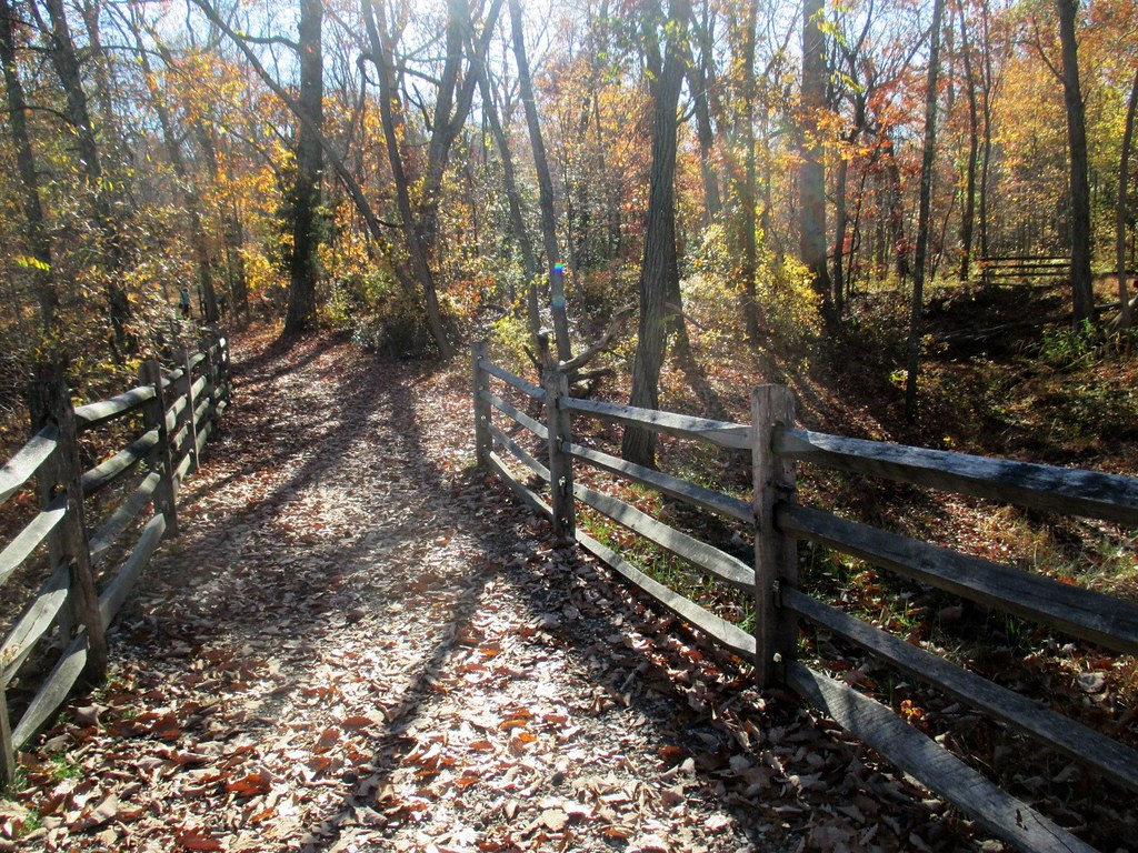 Allaire State Park 035
