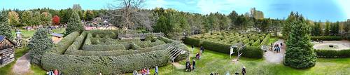 saundersfarm munsterhamlet mazes labyrinths fun fall